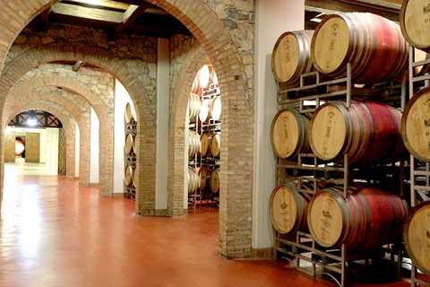 How to Improve a Wine Cellar's Hygiene Using Polymer Floor Solutions