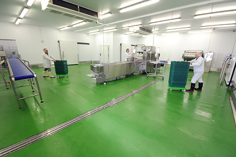 Antimicrobial Flooring Facts for the Food and Beverage Industry
